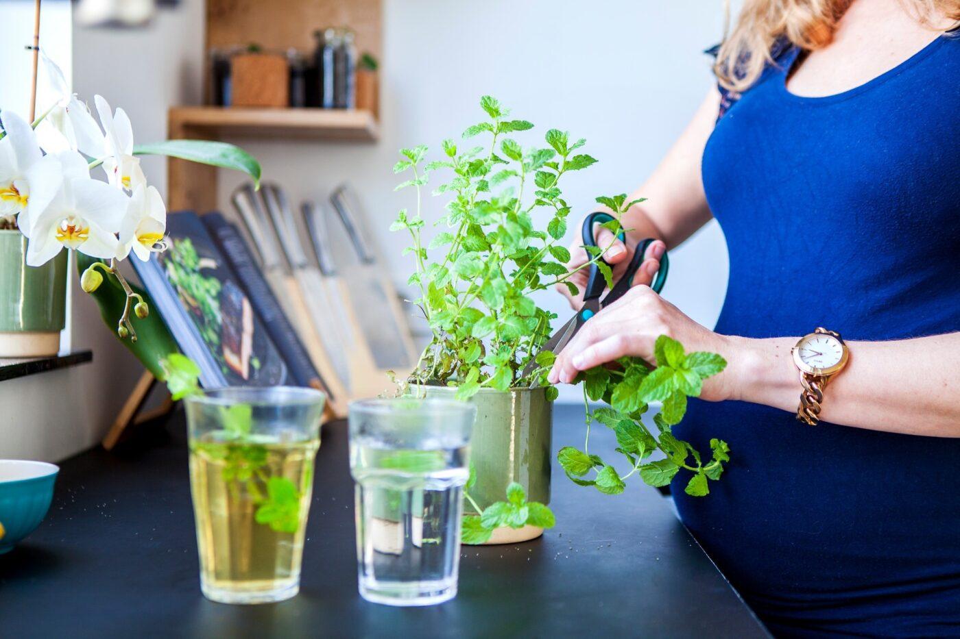 Duurzaam wonen website top image