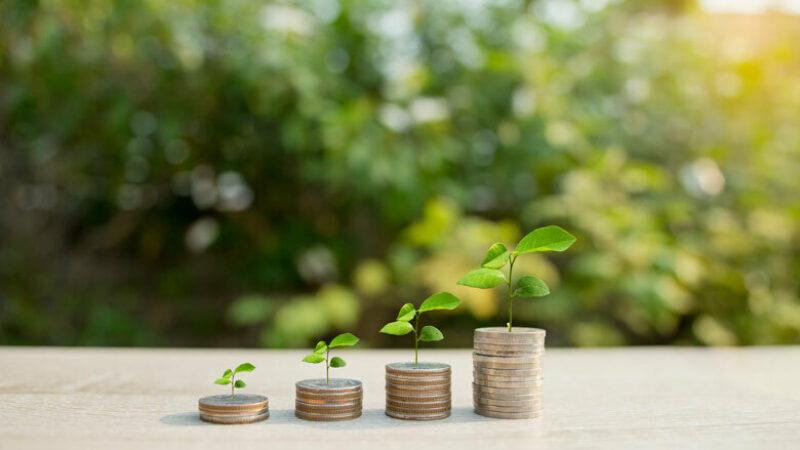 Groene obligatie 08042019