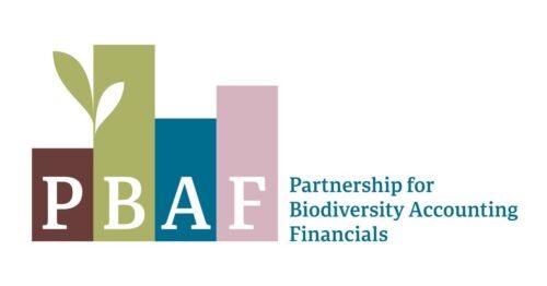 PBAF logo 002