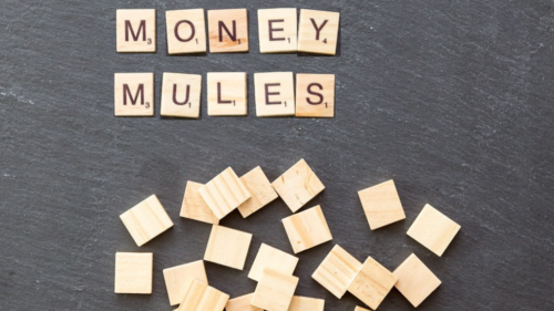 Moneymule website